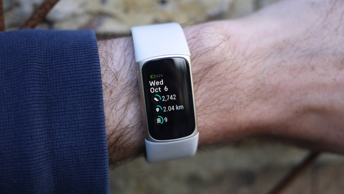 Fitbit Charge 5 stats
